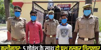 कुशीनगर: मैजिक वाहन से बध हेतु ले जाये जा रहे पाँच राशि गोवंश के साथ दो पशु तस्कर गिरफ्तार